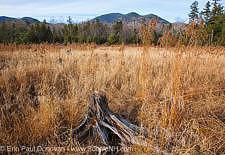 Mount Carrigain - White Mountains, New Hampshire USA