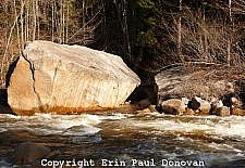 Pemigewasset Wilderness - White Mountains, NH USA