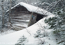 Resolution Shelter - Dry River Wilderness, White Mountains, NH