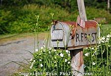 Robert Frost Homestead