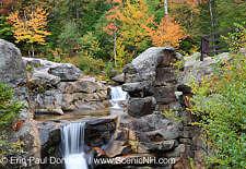 Foliage Report – New England