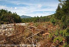 Tropical Storm Irene - White Mountain National Forest, New Hampshire