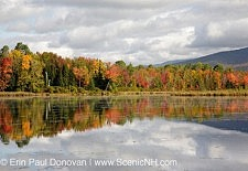 Autumn Foliage - New Hampshire