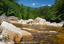 Pemigewasset Wilderness - Timber Trestle 18