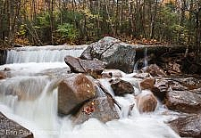 Pemigewasset Wilderness- Redrock Brook