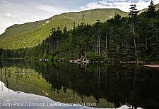 Greeley Ponds Scenic Area - White Mountains, NH