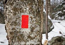 Artists Bluff - White Mountains, New Hampshire USA
