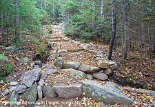 Mount Tecumseh Trail - White Mountains, New Hampshire