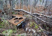 Remnants of a cooking stove made by Magee Furnace Company, Boston, Mass at the abandoned cabin settlement surrounding Elbow Pond in Woodstock, New Hampshire USA
