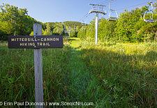 Mittensill-Cannon Trail - Cannon Mountain