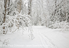 Lincoln Woods Trail in Lincoln New Hampshire USA during the winter months
