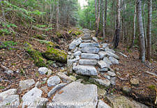 May 2016 - Mt Tecumseh Trail - Waterville Valley, New Hampshire