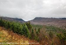 November, White Mountains