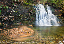 Tributaries of the Wild Ammonoosuc River