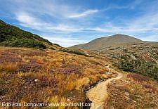 Crawford Path - Mt Washington, New Hampshire