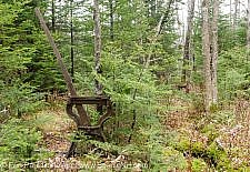 Beebe River Railroad - Harp Switch Stand along the old Beebe River Railroad in Waterville Valley, New Hampshire USA. This was an logging railroad, which operated from 1917 - 1942.