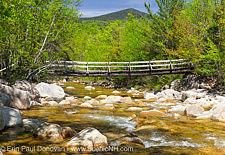 Thoreau Falls Trail Bridge Removal