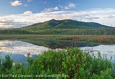 Pondicherry Wildlife Refuge - Cherry Mountain from Moorhen Marsh along the Cohos Trail in Jefferson, New Hampshire USA