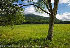 Cook's Pasture along Diamond Ledge Road in Sandwich, New Hampshire