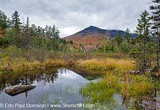 Owl's Head - Pemigewasset Wilderness, New Hampshire