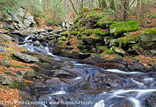November, Whitcher Brook in Benton, New Hampshire USA
