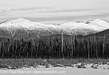 Presidential Range Rail Trail Cohos Trail - Jefferson New Hampshire