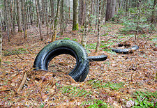 Abandoned Tires - Easton, New Hampshire