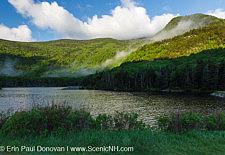 Beaver Pond - Kinsman Notch, New Hampshire