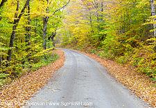 Autumn Foliage - Sawyer River Road, New Hampshire