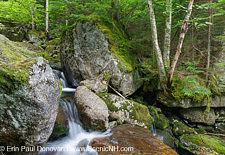 Cascade #5 - Cold Brook, Randolph