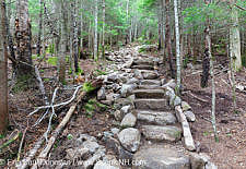 Stone Steps - Mt Tecumseh Trail, New Hampshire