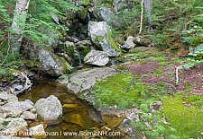 Elephant Head Brook - Carroll, New Hampshire