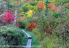 Echo Lake - Franconia Notch, New Hampshire USA