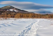 Downes - Oliverian Brook Ski Trail - White Mountains, New Hampshire