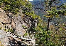 Hi-Cannon Trail - White Mountains, New Hampshire