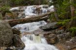 Walton's Cascade - Lincoln, New Hampshire