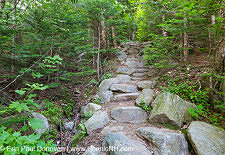 Valley Way - White Mountains, New Hampshire
