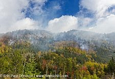 Dilly Cliff Forest Fire - Kinsman Notch, New Hampshire