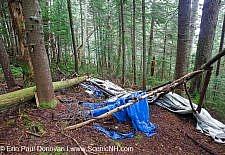 Human Impact on Nature - White Mountains New Hampshire