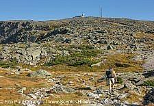 Gulfside Trail - Mount Washington, New Hampshire