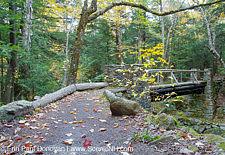 Memorial Bridge - Randolph, New Hampshire