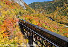 Willey Brook Trestle - Crawford Notch, New Hampshire