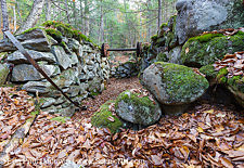 Abandoned Hill Farm Community - Thornton Gore, New Hampshire