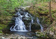 Gordon Fall - Randolph, New Hampshire